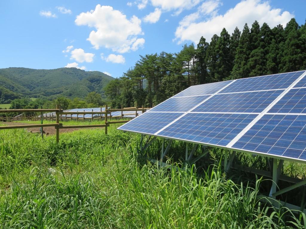 福島県郡山市熱海町太陽光発電所(写真提供:佐々木健洋さん)
