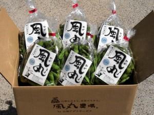 地元特産の枝豆、毛豆。「風丸」と名付け、全国の出資者への直販やオーナー制度により、2000万円以上の売上につながった。(写真提供/有限会社白神アグリビジネス)